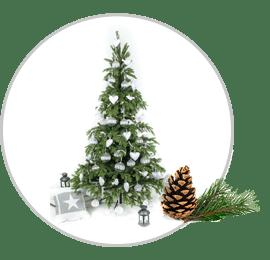 choinki bożonarodzeniowe alt